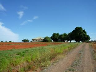 Beerwah 42 Acres, Opportunities Plus!! - Beerwah