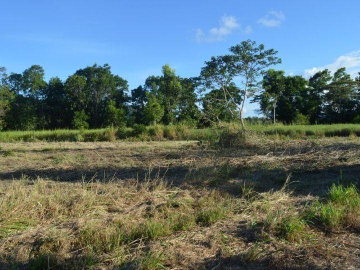 44 Dargin Road, Maria Creeks, QLD