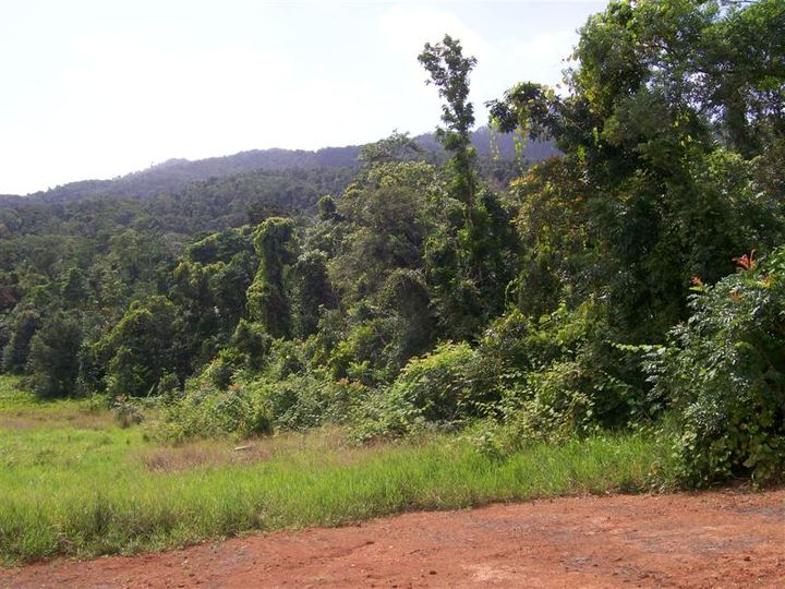 Lot 9 Rainforest Drive, Jubilee Heights, Innisfail, QLD
