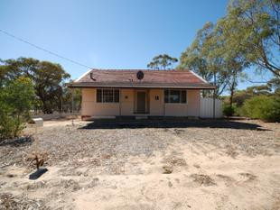 GREAT PROPERTY ON TWO TITLES! - Pingelly