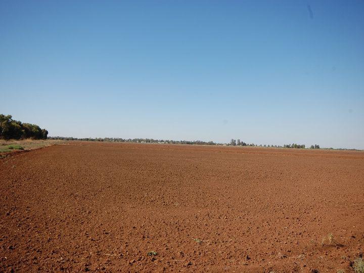 Farm 1058a Kidman Way, Hanwood, NSW