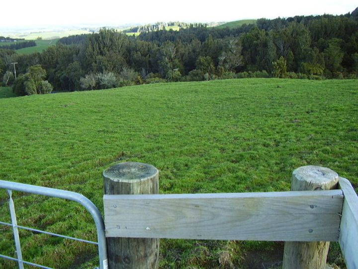 254H (Lot 10) Pekanui Road, Pirongia, Waipa District