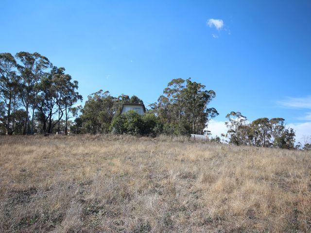 476 Curly Dick Road, Tarana, NSW