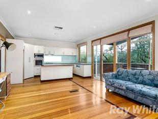 MOUNTAIN VIEWS AND WALK TO THE GLEN - INSPECTION BY APPOINTMENT - Glen Waverley