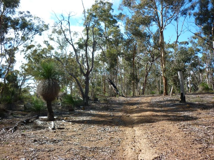 Lot 35 Patersonia Road, Chittering, WA