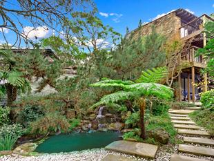 Family Home in Private Leafy Setting - Frenchs Forest