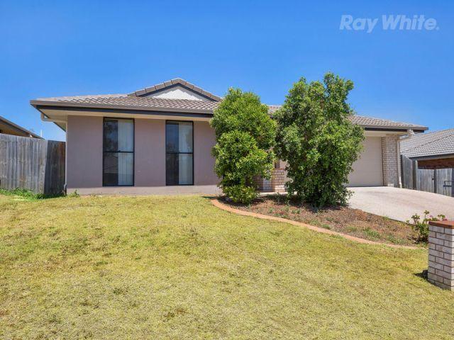 Room For Rent Redbank Plains