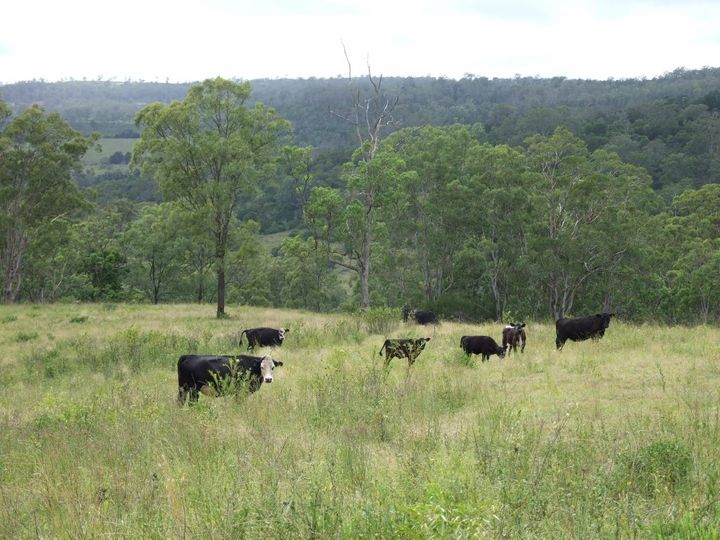 L400 Schick Road, Thornville, QLD
