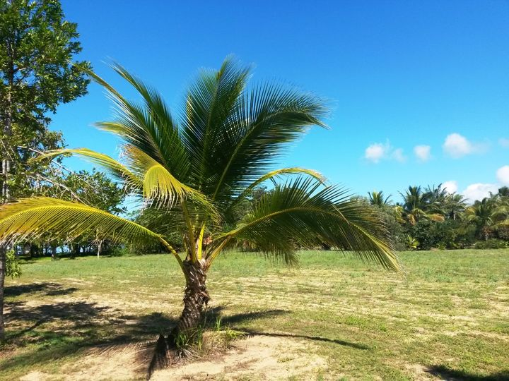 Lot 2 Maria Creek Estate, Kurrimine Beach, QLD