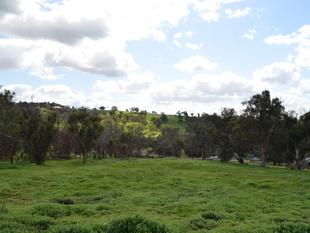 PRIME 3.9 ACRES OF VACANT LAND - Bindoon