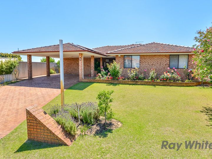 9 Norfolk Court, Bateman, WA
