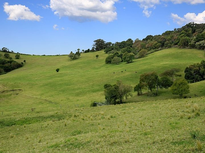 Lot 2 Wallaby Hill Road, Jamberoo, NSW