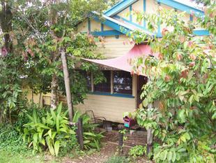TWO BEDROOM QUEENSLANDER ON A CORNER TREED BLOCK - Reduced! - East Innisfail