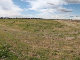 PRIME IRRIGATION PROPERTY - Singleton