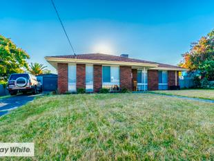 ALEX DABAG  TEAM PRESENTS.. BEAUTIFUL FAMILY HOME WITH HUGE POTENTIAL! - Koondoola