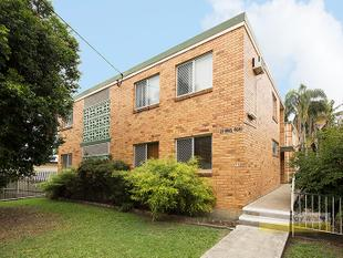 3 BEDROOMS FOR THE PRICE OF 2!! - Clayfield
