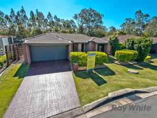 Contract Crashed!! 4 Bedroom + 1 Study on 630m2 Block! - Carseldine