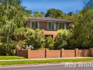 LIFESTYLE LIVING IN PRIME LOCATION  GWSC CATCHMENT - Glen Waverley