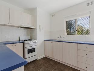 GREAT UNIT, GREAT COMPLEX - Parmelia