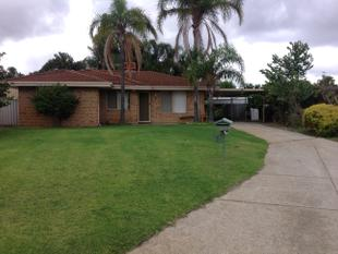 A Little Gem  *** PRICE REDUCED*** - Ballajura