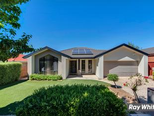Impressive Home in Ideal Location - Amaroo