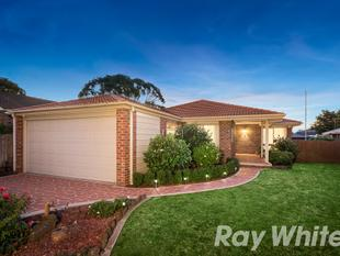 Sunlit And Spacious Family Dream - Wantirna South
