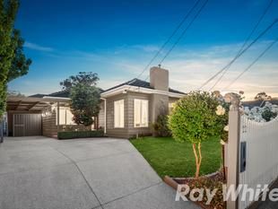 AUCTION THIS SATURDAY - Space, style and sophistication - Box Hill South