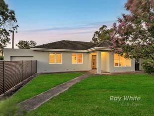 Ideal Family Home - Magill