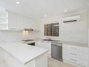 Price Reduced!  Immaculate Breezy - Walk to Indooroopilly - Indooroopilly