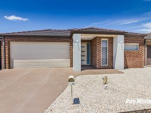Brand New In Bloom Estate!! - Clyde North