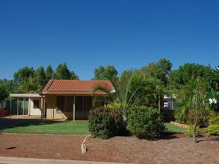 Dampier Beauty! - Dampier