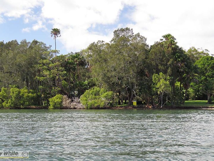Lot 5 and 6 Wallis Island, Forster, NSW
