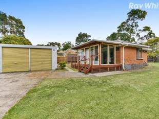 Renovated and Ready for you 3 Bedroom family home close to shops and schools. - Ferntree Gully