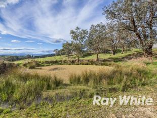 Endless Possibilities on 32 Stunning Acres! - Yarrambat