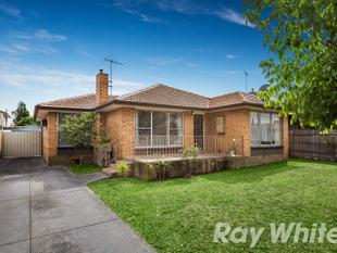 AUCTION THIS SATURDAY - Project opportunity in a prime position - Blackburn South