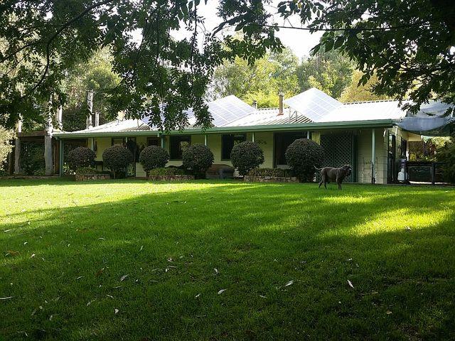 674 Harness Cask Road, Tyringham, NSW
