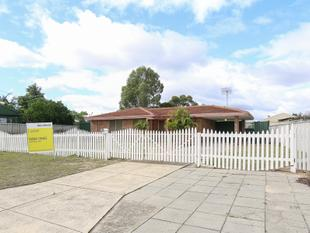 HUGE BACKYARD FOR THE KIDS TO PLAY - Gosnells