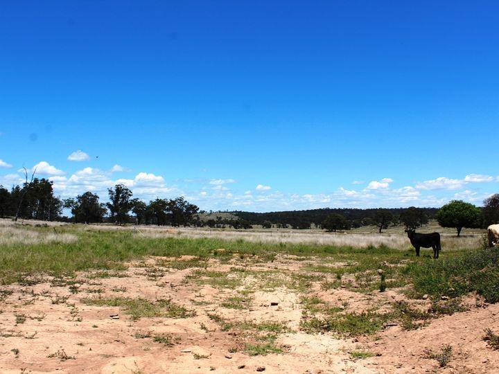 2936 Stonehenge Road, Stonehenge, QLD