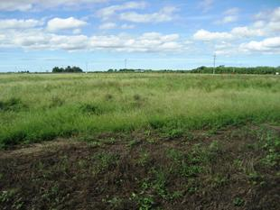 HIGHWAY FRONTAGE RURAL LAND - Mcdesme
