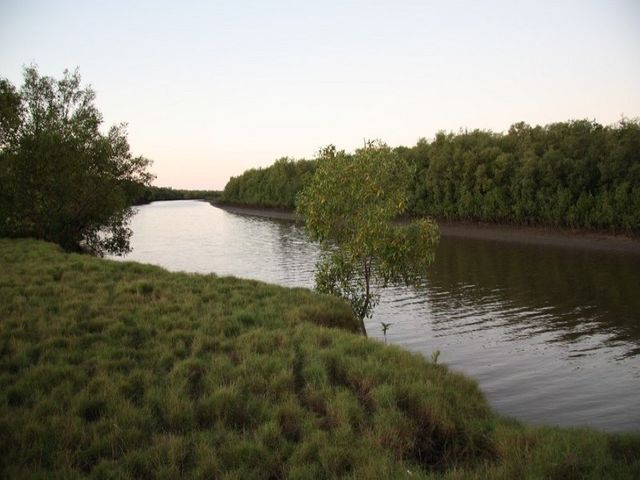 Jarvisfield, QLD