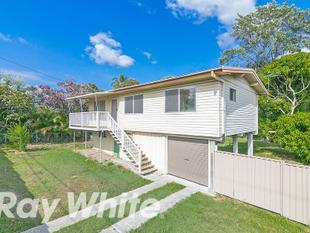 Renovated 3 Bedroom High-set with Plenty of Privacy! - Woodridge