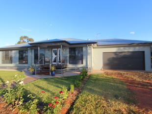LIFESTYLE PROPERTY CLOSE TO TOWN - MOTIVATED SELLERS! - Charleville