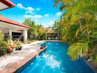 Private Tropical Family Retreat - Pelican Waters