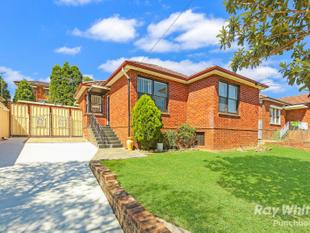 Renovated Double Brick Modern Family Home  Quite & Prime Location! - Punchbowl