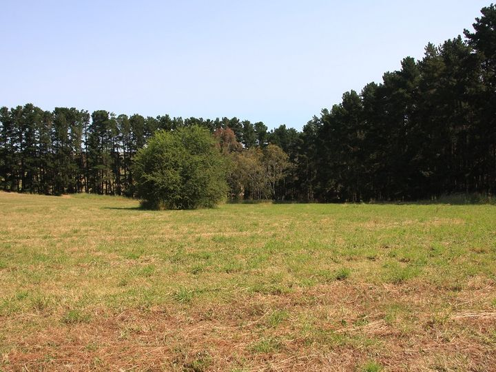 Lot 64 Gould Road, Mount Barker Springs, SA