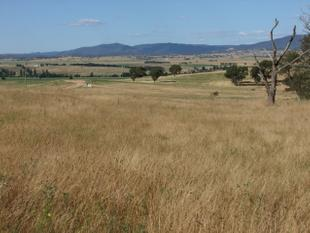 EXCLUSIVE RURAL LIVING - Bathurst