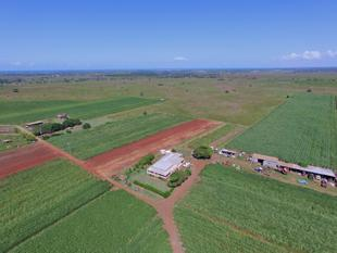 MASSIVE POTENTIAL 305 ACRES OF MIXED RED SOIL CANE & CATTLE FARM - PRESENT ALL OFFERS - Woongarra