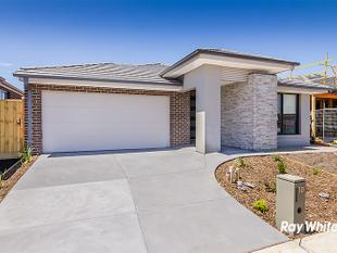 BRAND NEW HOME IN THE BLOOM ESTATE - Clyde North