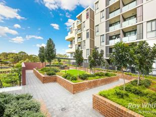 Level 2 Apartment with views - Riverwood