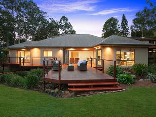 Irresistible entertainer with a contemporary flair - Wahroonga